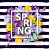 Υπόβαθρο άνοιξη με τα ανθίζοντας λουλούδια άνοιξη, κρόκοι διάνυσμα ελεύθερη απεικόνιση δικαιώματος