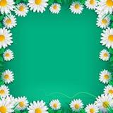 Υπόβαθρο άνοιξη με τα λουλούδια για τη ευχετήρια κάρτα διανυσματική απεικόνιση