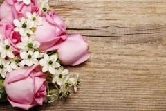 Υπόβαθρο άνοιξη με τα ρόδινα τριαντάφυλλα και το αραβικό λουλούδι αστεριών (ornit Στοκ εικόνα με δικαίωμα ελεύθερης χρήσης