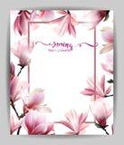 Υπόβαθρο άνοιξη με το άνθος brunch Magnolia διάνυσμα διανυσματική απεικόνιση