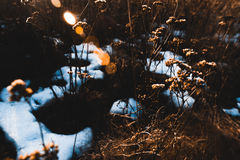 Υπόβαθρο άνοιξη - meltinh και ραγίζοντας πάγος Στοκ Εικόνα