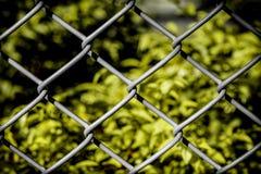 Υπόβαθρο έννοιας ελευθερίας/υπόβαθρο έννοιας ελευθερίας/έννοιας ελευθερίας που εμφανίζεται στο φράκτη καλωδίων Στοκ Φωτογραφίες