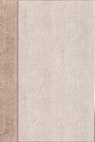 Υπόβαθρο, δέρμα, δομή Στοκ Φωτογραφία