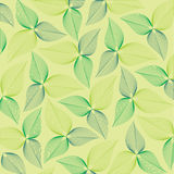 Υπόβαθρο ή σύσταση με τα φύλλα Στοκ Εικόνες