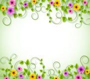 Υπόβαθρο αμπέλων για την εποχή άνοιξης με τα ρεαλιστικά ζωηρόχρωμα λουλούδια απεικόνιση αποθεμάτων