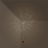 Υπόβαθρο απεικόνισης Spiderweb και αραχνών Στοκ εικόνες με δικαίωμα ελεύθερης χρήσης