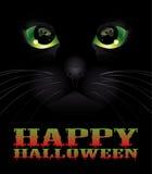 Υπόβαθρο αποκριών με τη μαύρη γάτα Στοκ φωτογραφίες με δικαίωμα ελεύθερης χρήσης