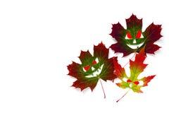 Υπόβαθρο αποκριών - χρωματισμένα φύλλα σφενδάμου φθινοπώρου υπό μορφή προσώπων με τα κόκκινα μάτια Άσπρη ανασκόπηση απομονωμένος Στοκ εικόνα με δικαίωμα ελεύθερης χρήσης