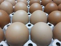 Υπόβαθρο αυγών Στοκ εικόνες με δικαίωμα ελεύθερης χρήσης
