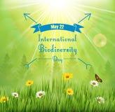 Υπόβαθρο βιοποικιλότητας με τα λουλούδια στα δέντρα λιβαδιών και πεύκων ελεύθερη απεικόνιση δικαιώματος