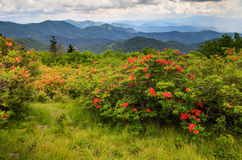 Υπόβαθρο βουνών της βόρειας Καρολίνας στοκ φωτογραφίες με δικαίωμα ελεύθερης χρήσης