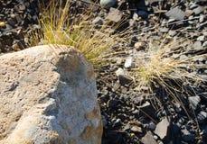 Υπόβαθρο βράχων στοκ εικόνες με δικαίωμα ελεύθερης χρήσης