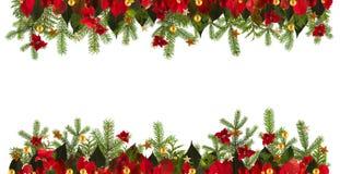 Υπόβαθρο διακοσμήσεων Χριστουγέννων με τα χρυσά αστέρια και το poinsetta Στοκ Εικόνα