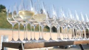 Υπόβαθρο ενός άσπρου ιταλικού και γαλλικού winefrom μια παραδοσιακή ποικιλία σταφυλιών, που συλλέγεται και που γίνεται από τον αγ απόθεμα βίντεο