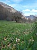 Υπόβαθρο ενός λιβαδιού βουνών, χαρακτηριστικός ιταλικός περιβαλλοντικός στοκ εικόνες με δικαίωμα ελεύθερης χρήσης