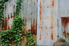 Υπόβαθρο επαρχίας τοίχων στεγών κασσίτερου Στοκ Εικόνες