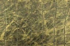 Υπόβαθρο δερμάτων φιδιών Στοκ εικόνα με δικαίωμα ελεύθερης χρήσης