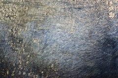 υπόβαθρο δερμάτων buffallo Στοκ φωτογραφίες με δικαίωμα ελεύθερης χρήσης