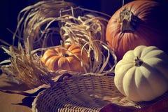 Υπόβαθρο ημέρας των ευχαριστιών με τις κολοκύθες. Αναδρομική κάρτα Στοκ Φωτογραφίες