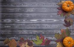 Υπόβαθρο ημέρας των ευχαριστιών φθινοπώρου στοκ φωτογραφίες