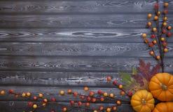 Υπόβαθρο ημέρας των ευχαριστιών φθινοπώρου στοκ φωτογραφία