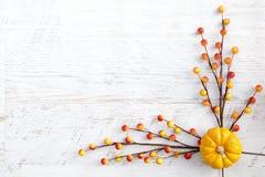 Υπόβαθρο ημέρας των ευχαριστιών φθινοπώρου Στοκ Εικόνες