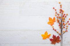 Υπόβαθρο ημέρας των ευχαριστιών φθινοπώρου Στοκ φωτογραφία με δικαίωμα ελεύθερης χρήσης