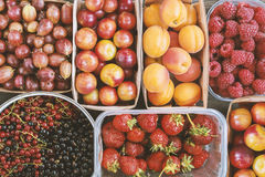 Υπόβαθρο θερινών μούρων και φρούτων Στοκ Φωτογραφίες