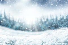 Υπόβαθρο και δέντρο χιονιού Χειμερινό σκηνικό με το φως του ήλιου στο χρόνο πρωινού στοκ φωτογραφία