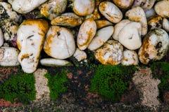 Υπόβαθρο και σύσταση φύσης βρύου και πετρών Στοκ φωτογραφία με δικαίωμα ελεύθερης χρήσης
