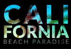 Υπόβαθρο Καλιφόρνιας με το φοίνικα Διανυσματική παραλία υποβάθρου Σχέδιο θερινών τροπικό εμβλημάτων Απεικόνιση προτύπων αφισών πα απεικόνιση αποθεμάτων