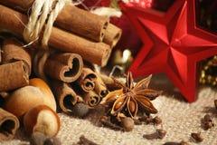 Υπόβαθρο καρυκευμάτων Χριστουγέννων Στοκ Φωτογραφίες
