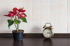 Υπόβαθρο κουζινών worktop Εγκαταστάσεις με το ρολόι Στοκ Φωτογραφία