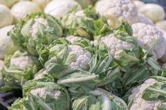 Υπόβαθρο κουνουπιδιών, ομάδα κουνουπιδιού με τα πράσινα φύλλα, κουνουπίδι στην αγορά Φρέσκο ώριμο κουνουπίδι για την πώληση σε έν Στοκ Φωτογραφίες