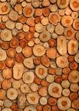 Υπόβαθρο κούτσουρων ξυλείας Στοκ εικόνα με δικαίωμα ελεύθερης χρήσης