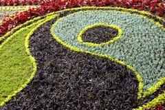 Υπόβαθρο κρεβατιών λουλουδιών Στοκ εικόνα με δικαίωμα ελεύθερης χρήσης