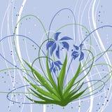 Υπόβαθρο κρητιδογραφιών με τα μπλε snowdrops διάνυσμα Στοκ Φωτογραφίες