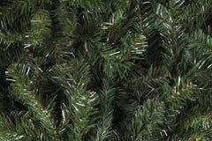 Υπόβαθρο κλάδων πεύκων Χριστουγέννων Στοκ Εικόνες