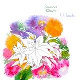 Υπόβαθρο με τα θερινά λουλούδια και watercolors-04 Στοκ φωτογραφία με δικαίωμα ελεύθερης χρήσης