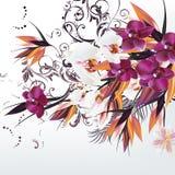 Υπόβαθρο με τα διανυσματικά λουλούδια ορχιδεών Στοκ Εικόνες