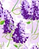 Υπόβαθρο με τα ιώδη λουλούδια Στοκ Εικόνες