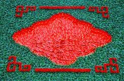 Υπόβαθρο με τα κόκκινα λουλούδια κρίνων φλαμίγκο, calla κρίνος Στοκ φωτογραφία με δικαίωμα ελεύθερης χρήσης