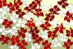 Υπόβαθρο με τα κόκκινα φύλλα πέρα από το φωτεινό backlightound Στοκ φωτογραφία με δικαίωμα ελεύθερης χρήσης