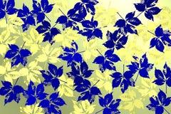 Υπόβαθρο με τα μπλε φύλλα πέρα από το φωτεινό backlightound Στοκ Εικόνες