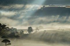 Υπόβαθρο με τα πυκνά αγροκτήματα κάλυψης ομίχλης και δάσος στο μέρος 5 αυγής στοκ εικόνες