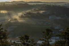 Υπόβαθρο με τα πυκνά αγροκτήματα κάλυψης ομίχλης και δάσος στο μέρος 8 αυγής στοκ εικόνες