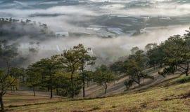Υπόβαθρο με τα πυκνά αγροκτήματα κάλυψης ομίχλης και δάσος στο μέρος 10 αυγής στοκ φωτογραφία με δικαίωμα ελεύθερης χρήσης