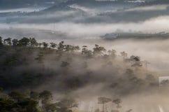 Υπόβαθρο με τα πυκνά αγροκτήματα κάλυψης ομίχλης και δάσος στο μέρος 11 αυγής στοκ εικόνες