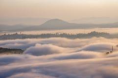 Υπόβαθρο με τα πυκνά αγροκτήματα κάλυψης ομίχλης και δάσος στο μέρος 20 αυγής στοκ εικόνες
