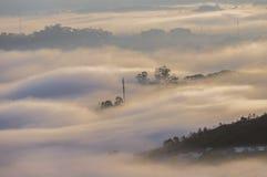 Υπόβαθρο με τα πυκνά αγροκτήματα κάλυψης ομίχλης και δάσος στο μέρος 23 αυγής στοκ εικόνα με δικαίωμα ελεύθερης χρήσης